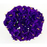 Cinco de Mayo Decorations Purple Carnations Image