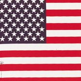 4th of July Party Wear American Flag Bandana Image