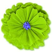 Mexican paper flowers mexican party supplies at amols fiesta cinco de mayo decorations rachels lime green flower image mightylinksfo