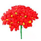 Cinco de Mayo Decorations Red Terecitas Flowers Image