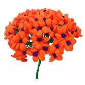 Cinco de Mayo Decorations Orange Terecitas Flowers Image