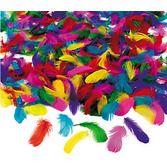 Mardi Gras Favors & Prizes Bulk Feather Assortment Image