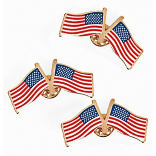 Double USA Flag Pins