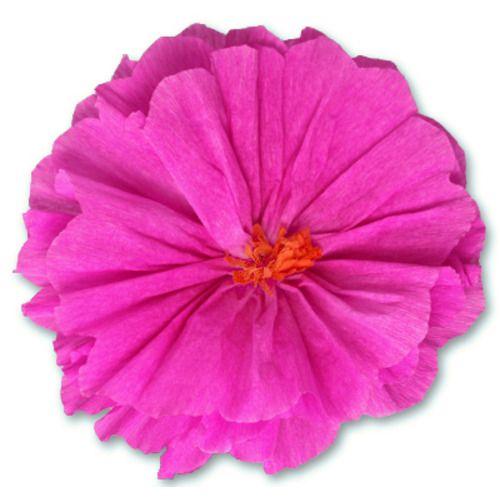Rachel's Hot Pink Flower