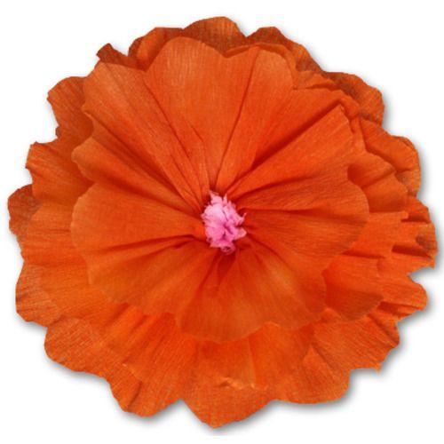 Rachel's Orange Flower