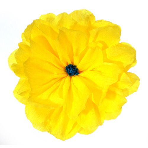 Rachel's Yellow Flower