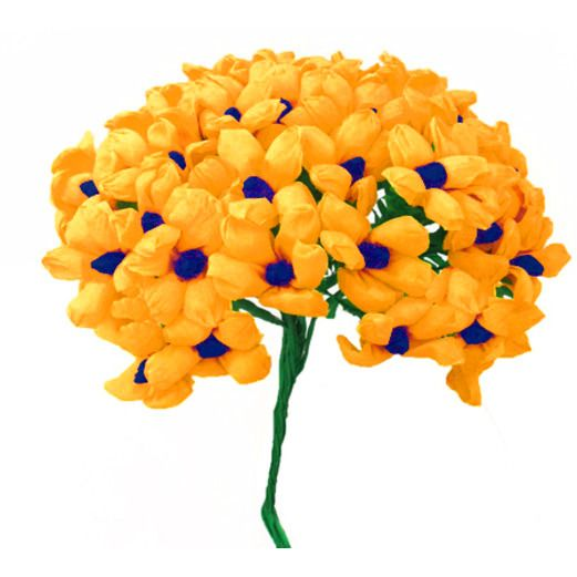 Cinco de Mayo Decorations Golden Yellow Terecitas Flowers Image