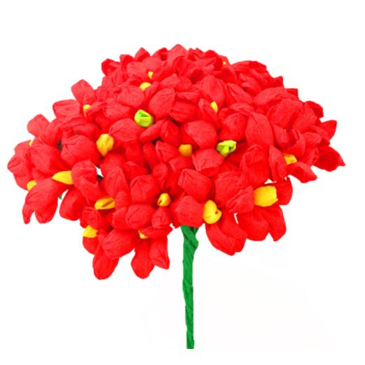 Cinco de Mayo Decorations Red Terecitas Flowers Image