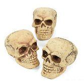 Halloween Decorations Small Foam Skulls Image