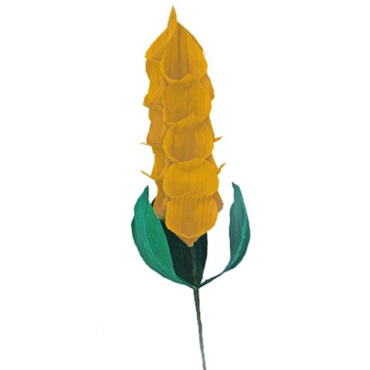 Cinco de Mayo Decorations Cornhusk Foxtail Flower Image