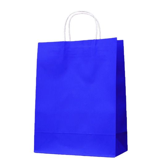 Blue paper gift bags with handles