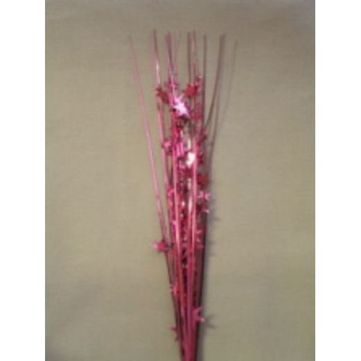 Decorations Star Onion Grass Burgundy Image