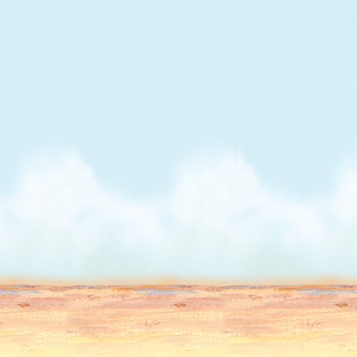 Western Decorations Desert Sky & Sand Backdrop Image