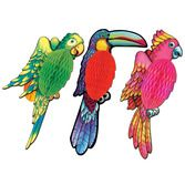 Cinco de Mayo Decorations Exotic Birds Image