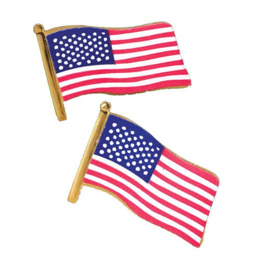 4th of July Favors & Prizes Metal USA Flag Pins Image