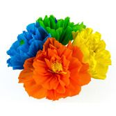 "Flowers Chayo's Flowers (8"") Image"