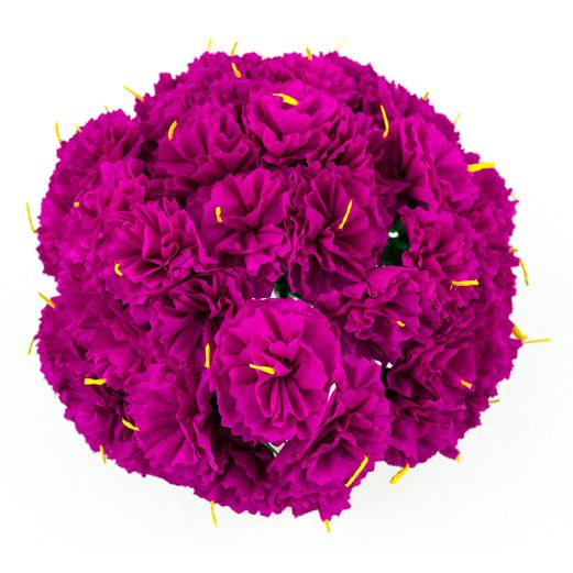Mexican paper flowers mexican party supplies at amols fiesta cinco de mayo decorations hot pink carnations image mightylinksfo