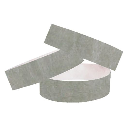 WB Tyvek Wristbands Silver Image