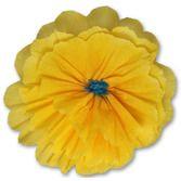 Flowers Rachel's Golden Yellow Flower Image