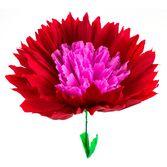 "Cinco de Mayo Decorations 12"" Flor de Sol Flower Image"