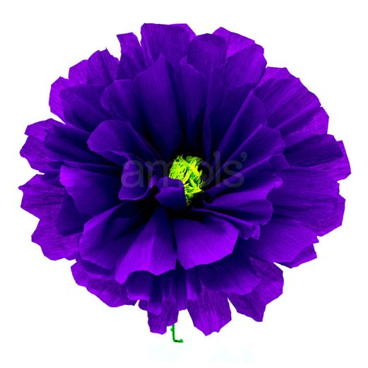 "Solana's 8"" Purple Flower Image"