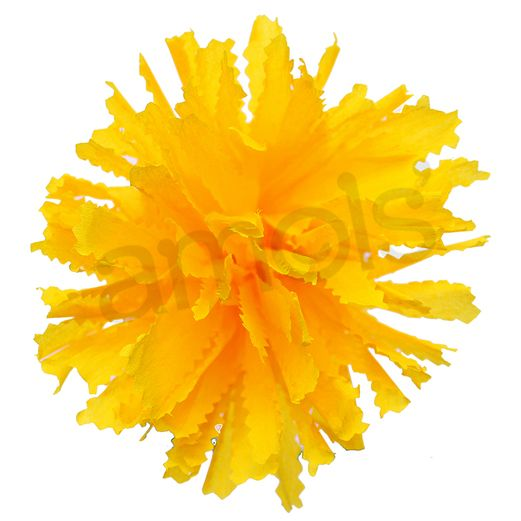 Day of the Dead Decorations Yellow Marigold Flower Image